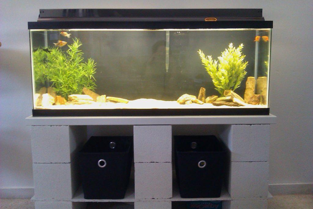 diy-aquarium-1