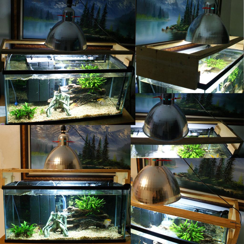 diy-aquarium-10