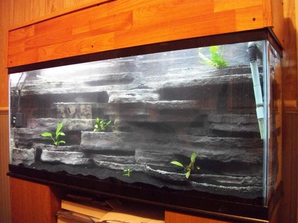 Calming Room Unusual And Creative Diy Aquarium Just Craft Amp Diy Projects