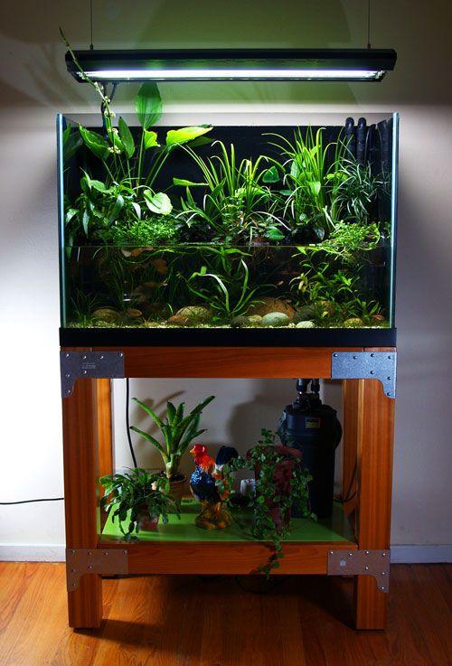 diy-aquarium-5