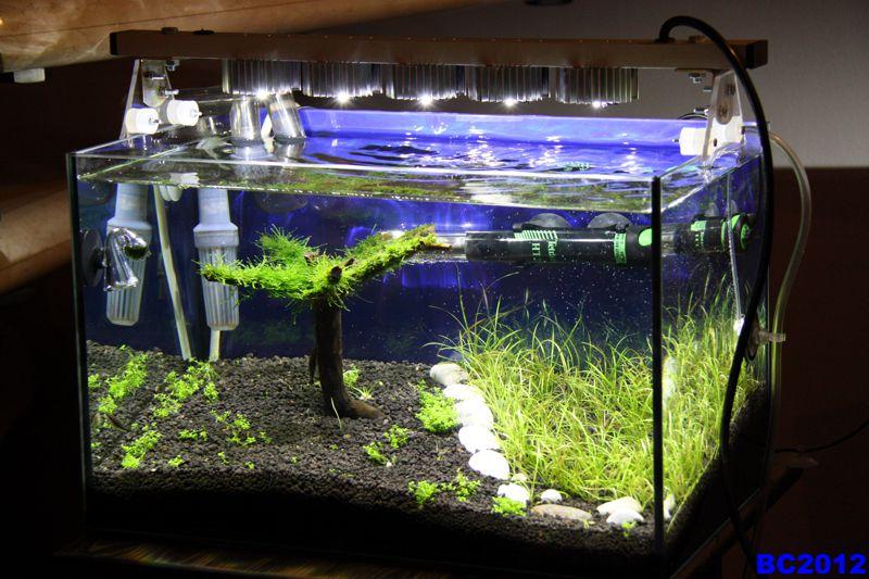 diy-aquarium-8