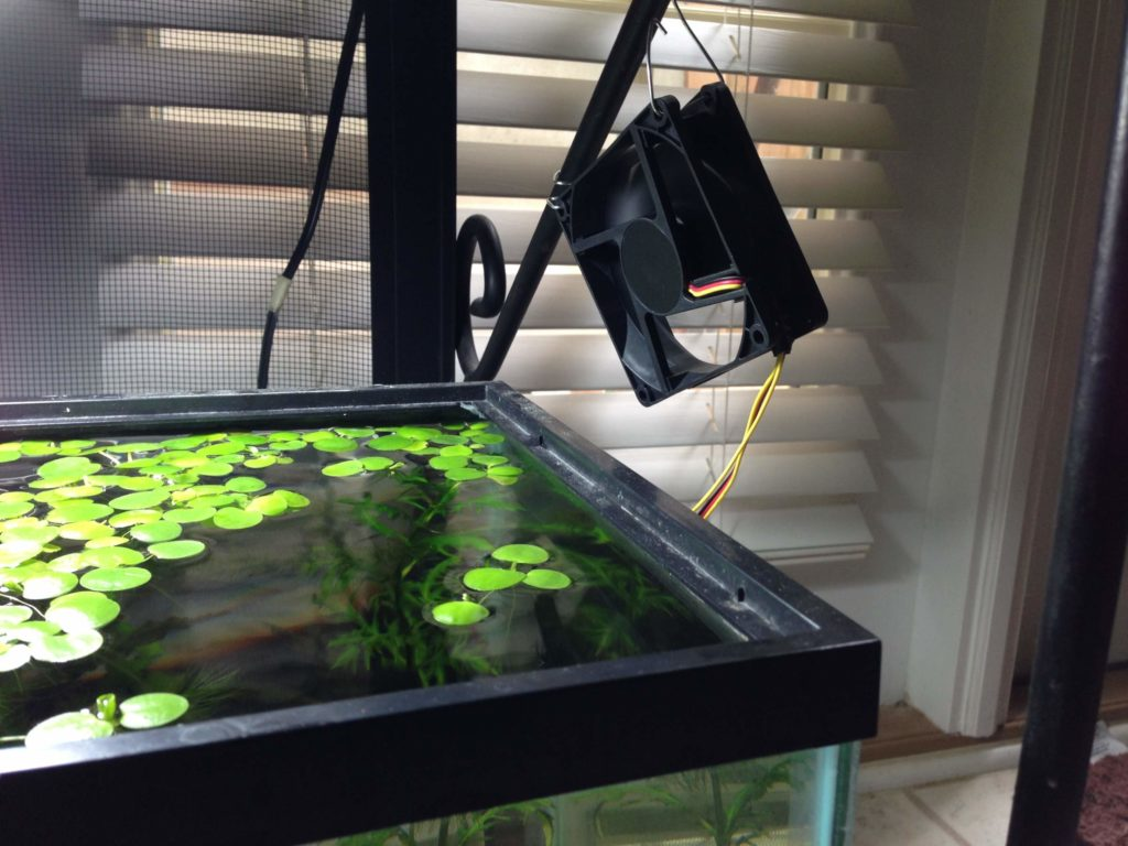 Unusual And Creative Diy Aquarium