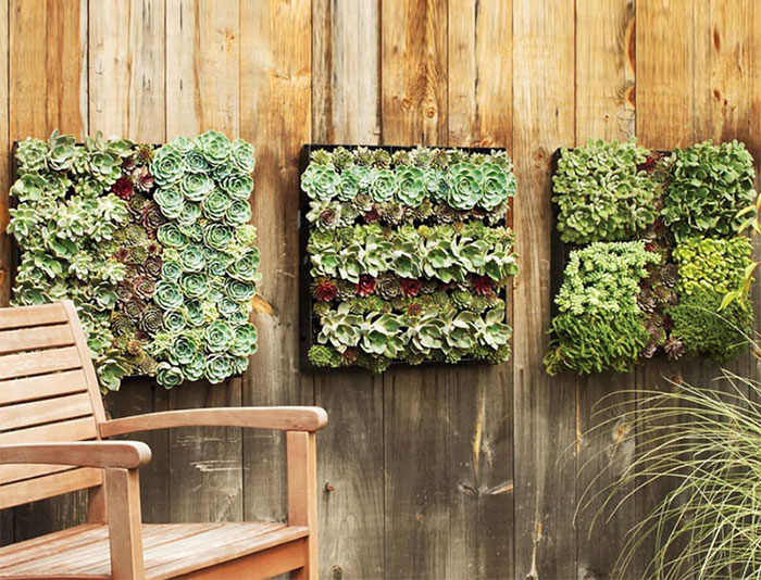 diy-living-fence-art-4